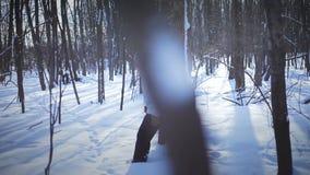 Сиротливая женщина Snowshoeing в природе