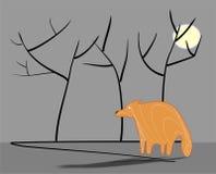 Сиротливая лиса Стоковое Фото