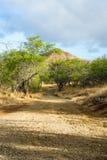 Сиротливая дорога к холмам Стоковое Изображение RF