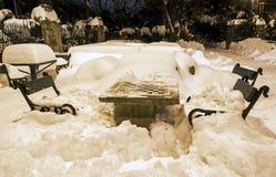 Сиротливая доска в wintertime Стоковые Фотографии RF