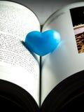 Сиротливое голубое сердце Стоковые Изображения RF