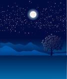Сиротливое дерево в ландшафте ночи. Illustr сини вектора Стоковые Изображения