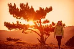 Сиротливое дерево на горе и женщине Стоковая Фотография