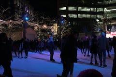 Сиротливое катание на коньках Стоковые Фото
