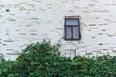 сиротливое окно Стоковые Фотографии RF