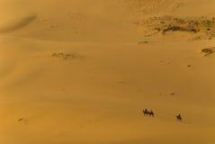 Сиротливый всадник верблюда в пустыне Гоби Стоковые Фотографии RF