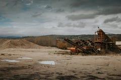 Сиротливый завод гравия Стоковая Фотография RF