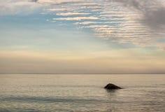 Сиротливый камень в озере Стоковое фото RF
