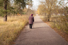 Сиротливый пенсионер Стоковое Изображение RF