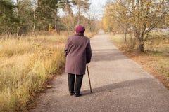 Сиротливый пенсионер Стоковое Фото