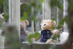 Сиротливый плюшевый медвежонок сидя и смотря вне окно Стоковые Фото