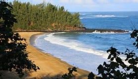 Сиротливый серфер на пляже Wainiha, Кауаи Стоковое фото RF