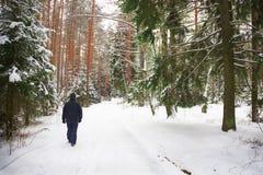 Сиротливый человек идет через лес зимы стоковое изображение rf