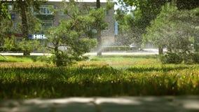 Система водообеспечения распыляет воду на лужайке красивый парк, сад намочен на красивом восходе солнца Малые падения сток-видео