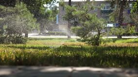 Система водообеспечения распыляет воду на лужайке красивый парк, сад намочен на красивом восходе солнца Небольшие падения акции видеоматериалы
