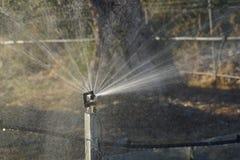 Система водообеспечения брызга Стоковые Фотографии RF