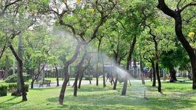 система Спрингера 4K для мочить деревья в саде акции видеоматериалы