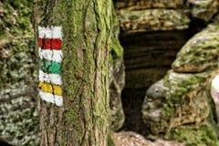 Система туристских знаков следа покрашенных на дереве утесами Стоковое Изображение RF