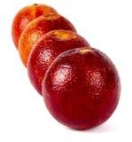 Сицилийские апельсины в ряд Стоковое фото RF