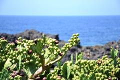 Сицилия Стоковое фото RF