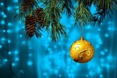Сияющая смертная казнь через повешение шарика золота рождества на сосне разветвляет с праздничной голубой предпосылкой Стоковая Фотография RF