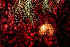 Сияющая смертная казнь через повешение шарика золота рождества на сосне разветвляет с красной предпосылкой Стоковые Фотографии RF