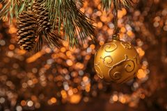 Сияющая смертная казнь через повешение шарика золота рождества на сосне разветвляет с оранжевой предпосылкой Стоковая Фотография