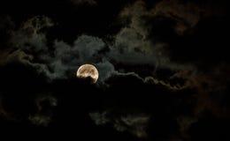 Сияющая луна стоковые фотографии rf