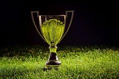 Сияющая чашка металла - первый приз Стоковое Изображение RF