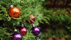 Сияющие шарики на рождественской елке Стоковые Фотографии RF