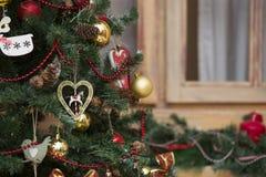 Сияющие шарики рождества вися на ветвях сосны Стоковые Фото