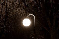 Сияющий уличный свет Стоковое Изображение RF