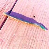Сияющий червь Стоковые Изображения RF