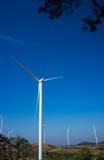 Сила Eco, ветротурбины производя электричество, energ способное к возрождению стоковая фотография rf