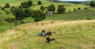 Сидеть на горном склоне стоковые фотографии rf