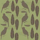 Сидеть птиц и пер петь простой безшовной картины коричневый Стоковое фото RF
