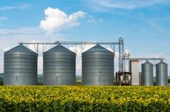 Силосохранилища для хранить зерно Стоковые Изображения RF