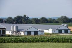 Силосохранилище зерна металлическое в стране Ланкастера Пенсильвании Амиша стоковое изображение rf