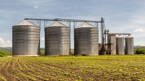 Силосохранилище зерна Стоковые Изображения RF