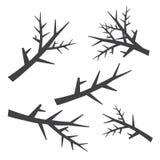 Силуэты ветвей дерева установили в стиль нарисованный рукой Стоковое Фото