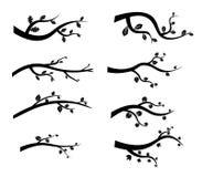 Силуэты ветви дерева вектора черные Стоковое Изображение