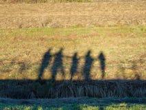 Силуэты группы в составе персона Стоковые Фото