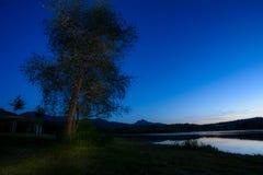 Силуэты дерева и горы на ноче Стоковые Фотографии RF