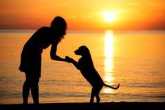 Силуэты женщины и собаки на пляже на заходе солнца Стоковое Изображение