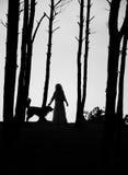 Силуэты женщины и собаки Стоковые Фото