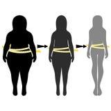 Силуэты женщин толстых и тонких вектор Стоковое фото RF