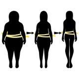 Силуэты женщин толстых и тонких Стоковые Изображения RF
