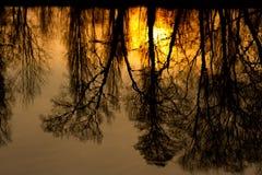 Силуэты захода солнца Стоковые Фотографии RF
