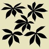 Силуэты листьев Стоковая Фотография