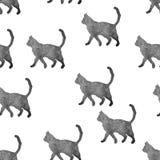 Силуэты кота Стоковое Изображение